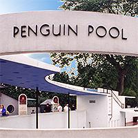 La piscine des pingouins du zoo de Londres, arch. Berthold Lubetkin, 1934.