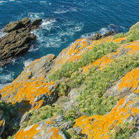 Île de Groix (Morbihan)