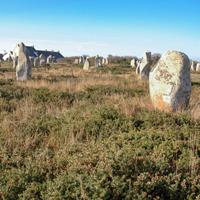 Le site des mégalithes de Carnac, avant restauration, 2008.